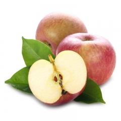 荆州 丑苹果  6斤