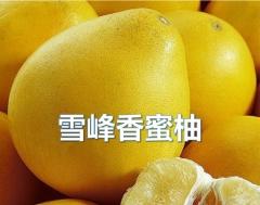 怀化 雪峰香蜜柚 10斤