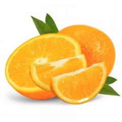 怀化 冰糖橙  5斤
