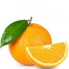 广西 沃柑 普通装   28个果以内 8斤