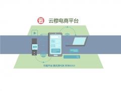 B2B2C电商平台系统